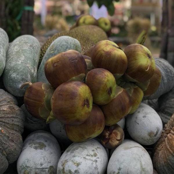 Fruits-du-palmier